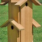 Bird House – Mini Tower (2 Compartments)
