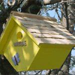 Wren House – Yellow