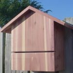 Bat House – Small Cedar