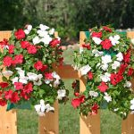 Mixed Impatiens Vertical Gardens – Set of 2