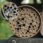 Mason Bee House Kit Jumbo – 118 tubes