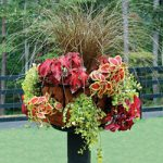 14″ Single Tier Basket Planter with Liner