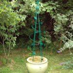Spiral Leaf Obelisk