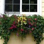 Window Box Planter and Liner Set – 24″