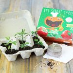 My First Garden – Pizza Seed Kit