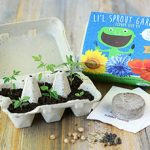 My First Garden – Flower Seed Kit