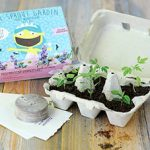 My First Garden – Fairy Wonderland Seed Kit